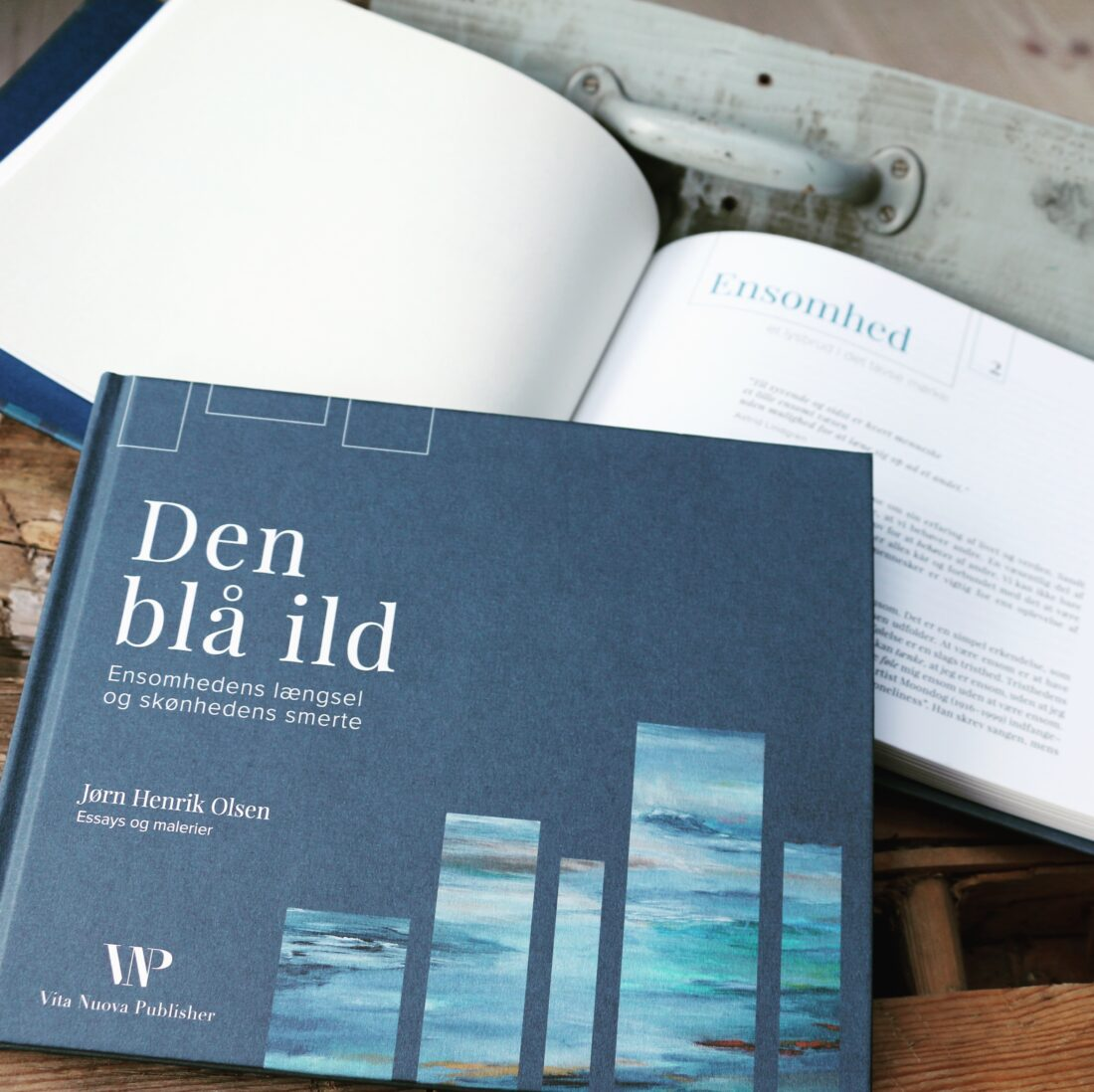Den_blaa_ild_bogdesign